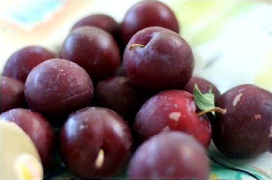 Plums for A Well Seasoned Kitchen