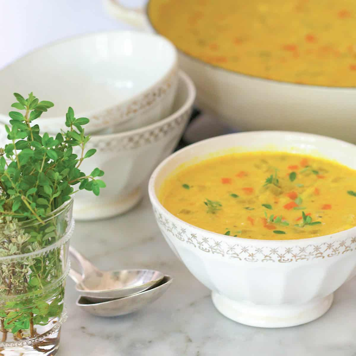 Indian Mulligatawny Soup A Well Seasoned Kitchen
